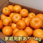 【家庭用訳あり/12月15日以降出荷】ポンカン/5kg/2L~M/30〜36玉/熊本県産
