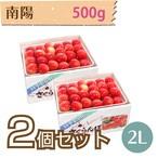 【さくらんぼ】南陽 500g【2L】×2個セット