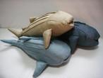 無地ジンベエザメ  Whale shark( Plain)