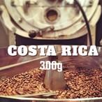 コスタリカ サンガブリエル ナチュラル  300g