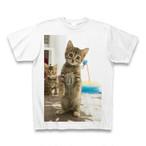 子猫のTシャツ1【送料無料】
