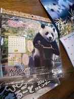 シャンシャンまるごとカレンダー2021