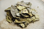 政所平番茶 / 生活の常茶 自然な甘さ < 川嶋いさ作 在来種 >
