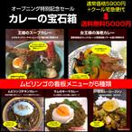 カレーの宝石箱【限定30個】送料無料