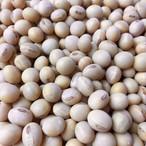 信州麻績村産 自然栽培大豆 ナカセンナリ 1kg 無農薬無肥料栽培