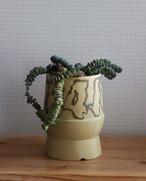 pot. 1984 と植物セット