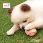 9。Paris Dog【正規輸入】犬 おもちゃ マカロン 音がなる カラフル
