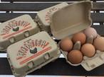 山梨県北杜市産 ROOSTER ケージフリーエッグ 6個×4パック