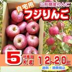 山形県産リンゴ「自宅用ふじ(5kg)」送料・消費税込み