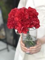【母の日ギフト】カーネーション花束10本(割れにくい花瓶付き)
