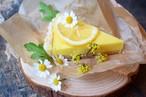 SEASONAL : LEMON TART RAW CAKE / 季節限定 レモンローケーキタルト(直径18cn)