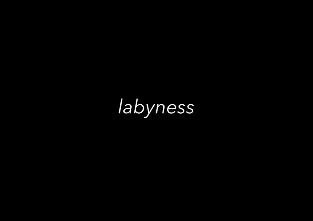 『Labyness株式会社』を設立