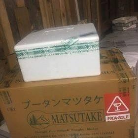 ブータン産生松茸2019年初入荷です。