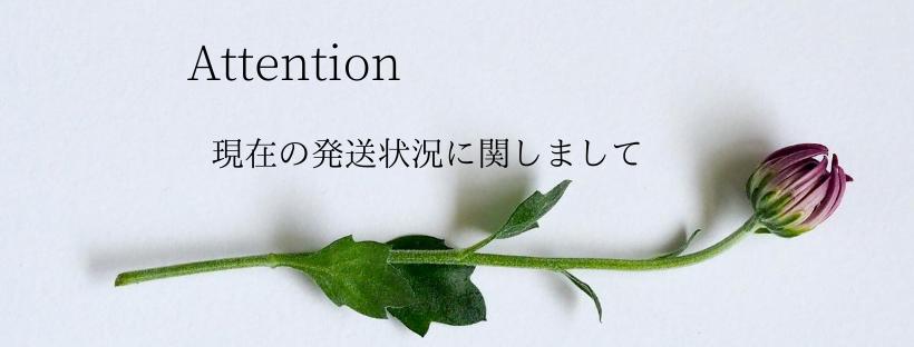 ◇現在の発送状況に関しまして◇
