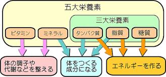 日本人は慢性的にミネラル不足になっている