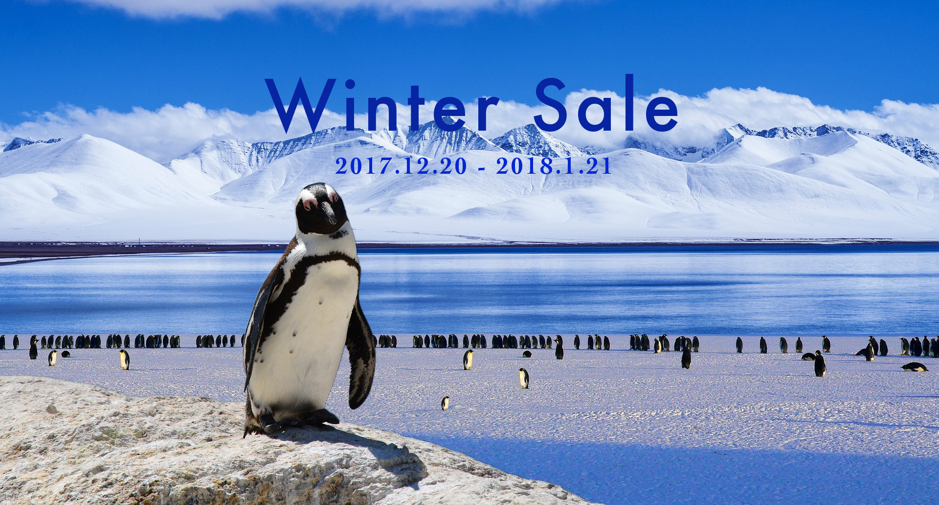 Winter Sale マリンコラーゲン10%OFF 2017-2018