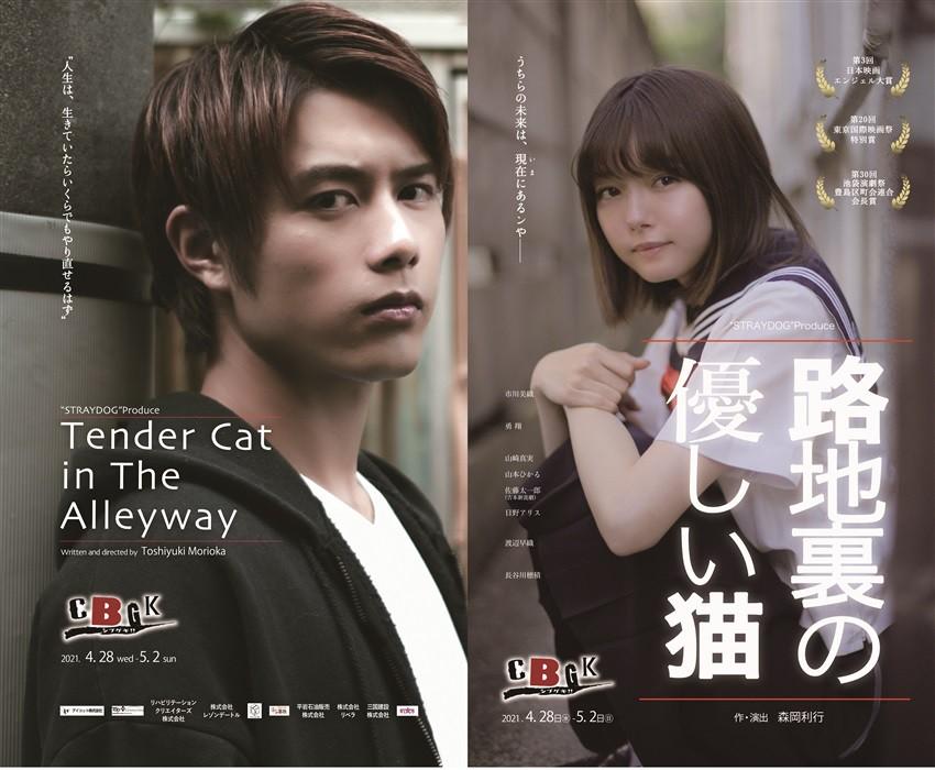 藤田円香 出演 舞台『路地裏の優しい猫』 チケット・無観客配信に関してのご案内