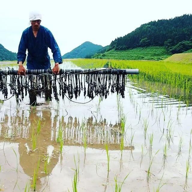 西日本の大雨災害について お見舞い申し上げます