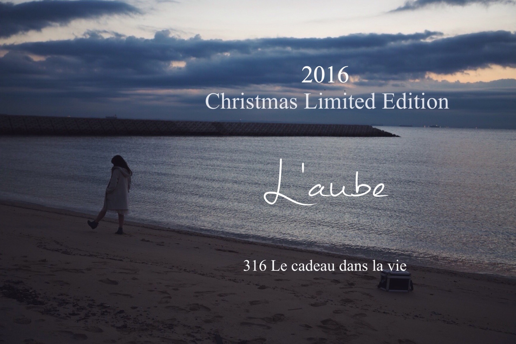 2016 Chiristmas Limited Edition Style Book
