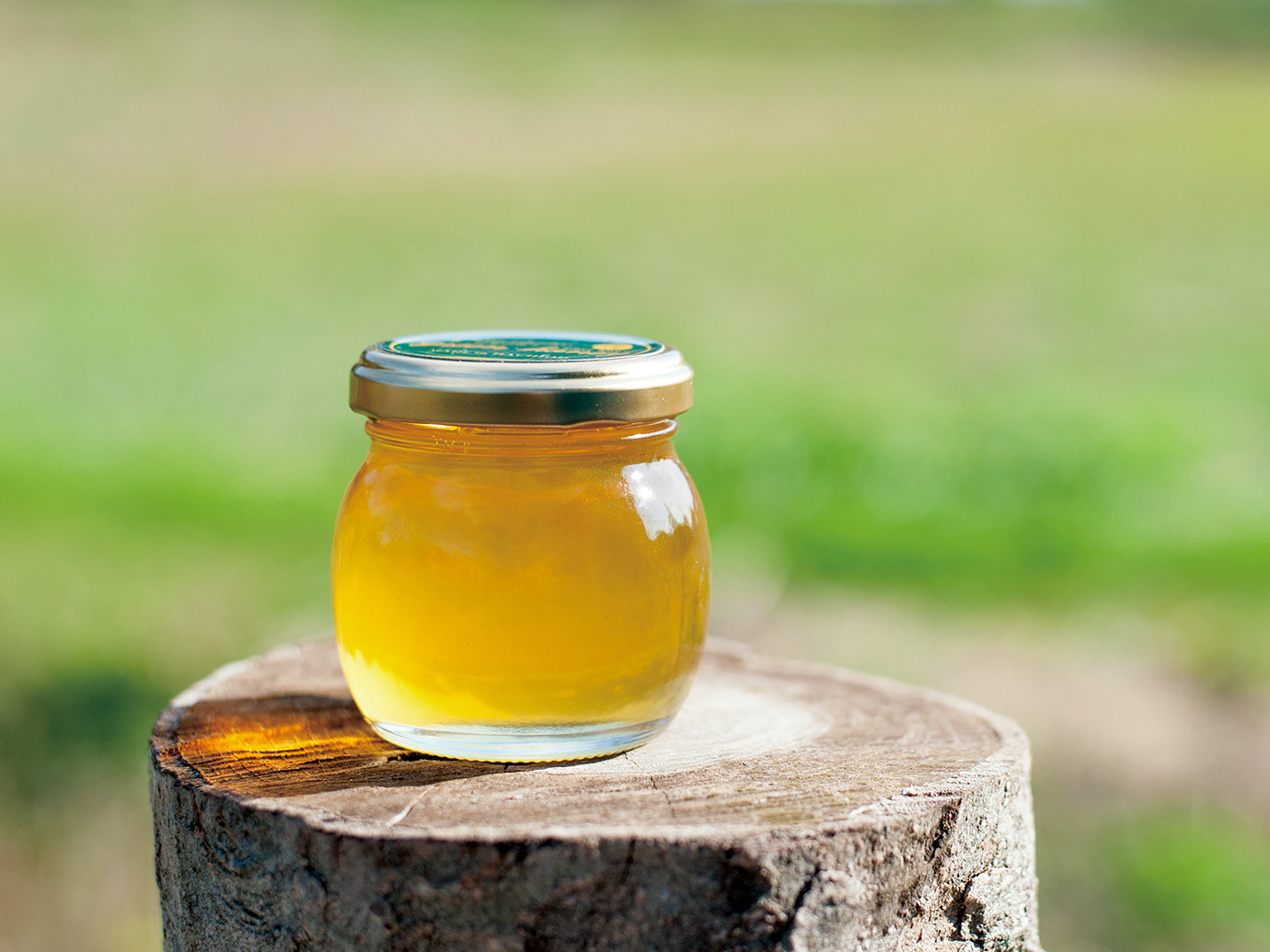 green honeyの2020年物について