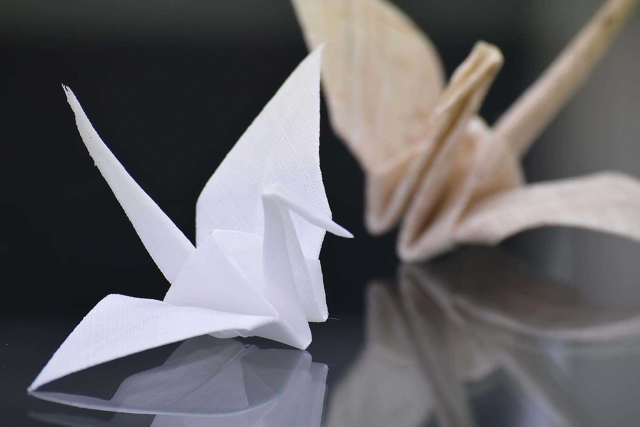新たな挑戦! 折り鶴の魅力は広がる。。。
