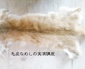 【講座・WS開催】毛皮鞣しの実演講座/鹿角のネックレス作り 12/21 東京・青梅