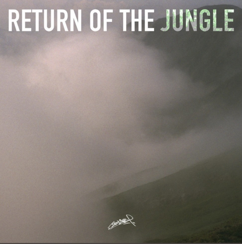 "配信開始!Yotaro ""Return Of The Jungle"""