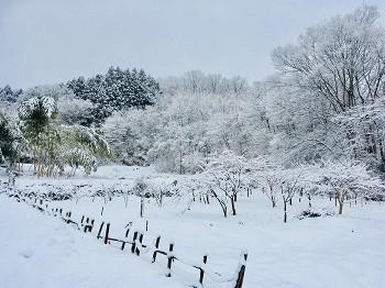 冬休みのお知らせ