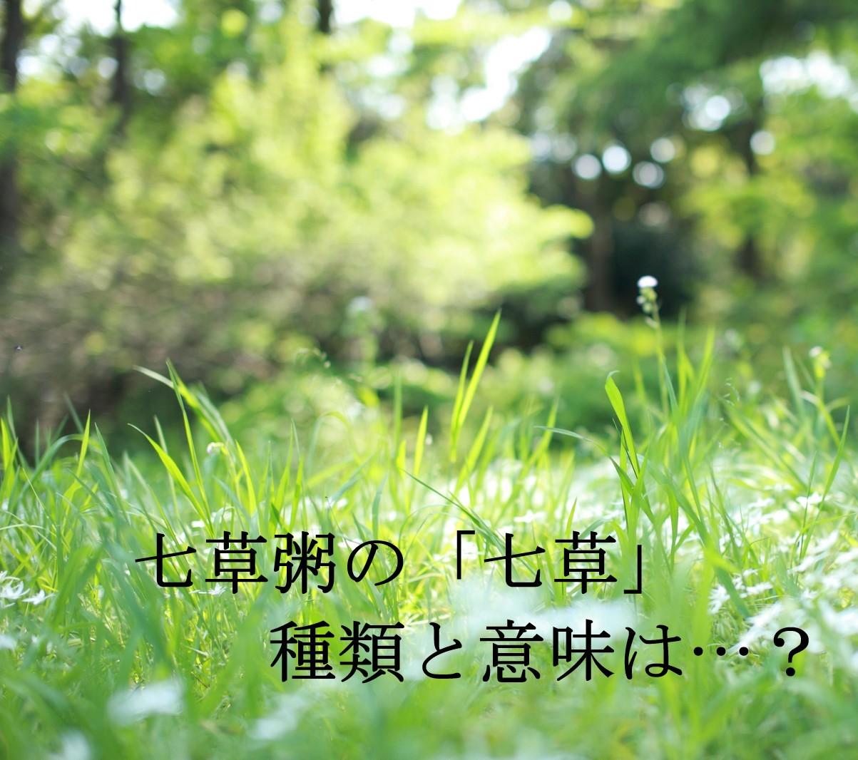 七草粥の「七草」種類・意味を知っていますか?