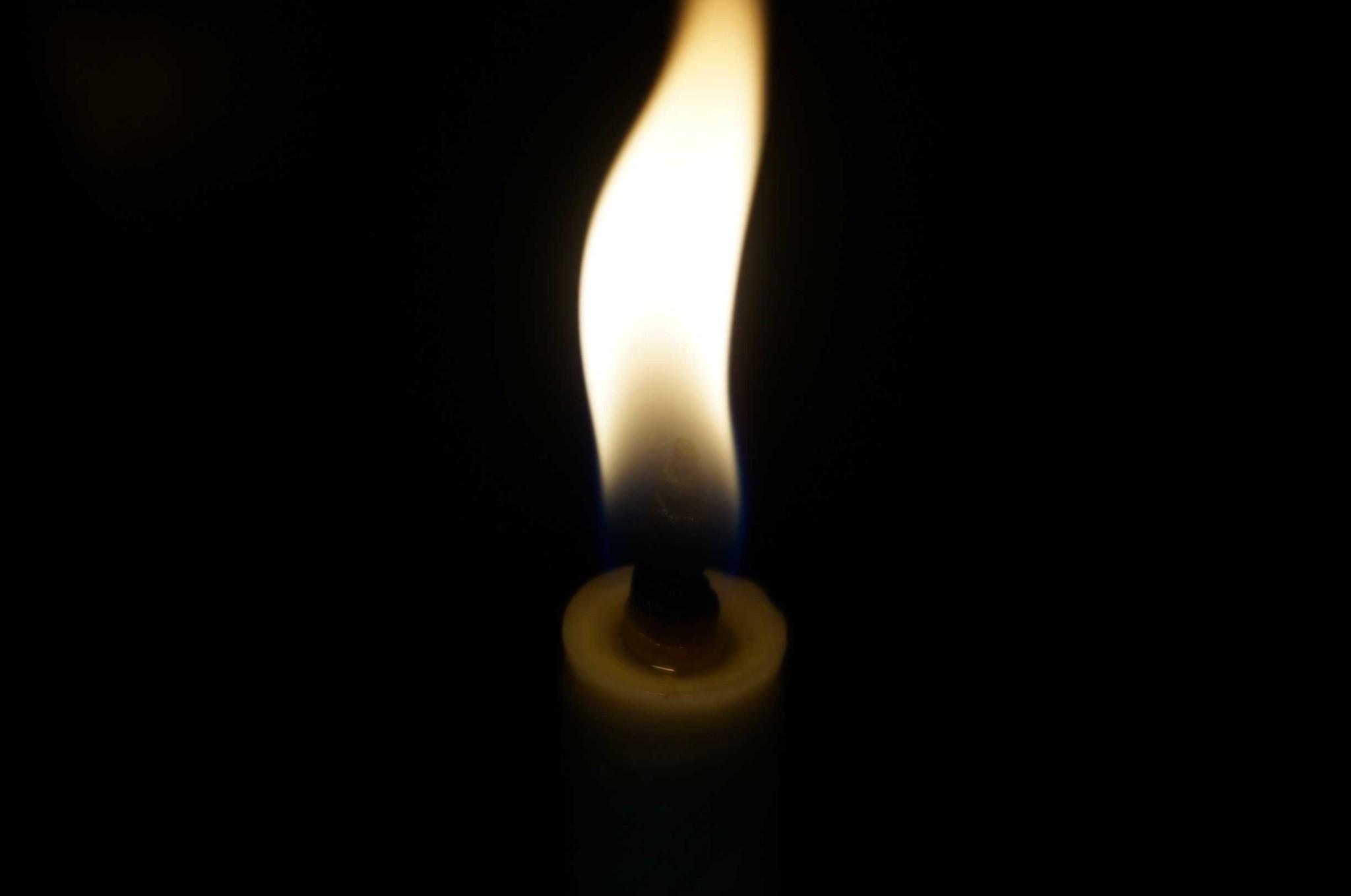 人類と火の親密な関係