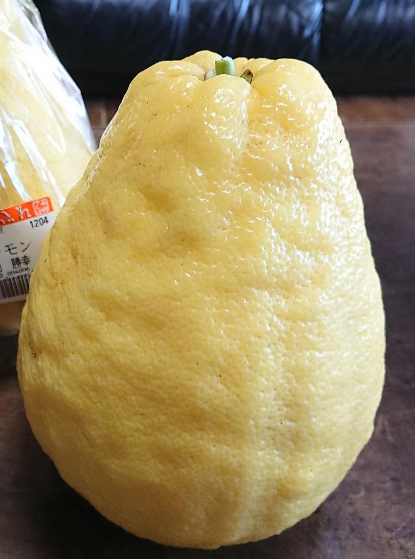 こちらは優しい味わいのジャンボレモン