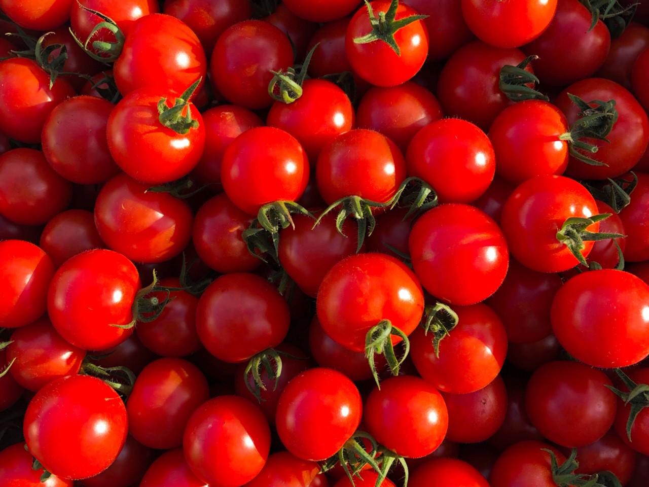 【超トマト販売開始のお知らせ】