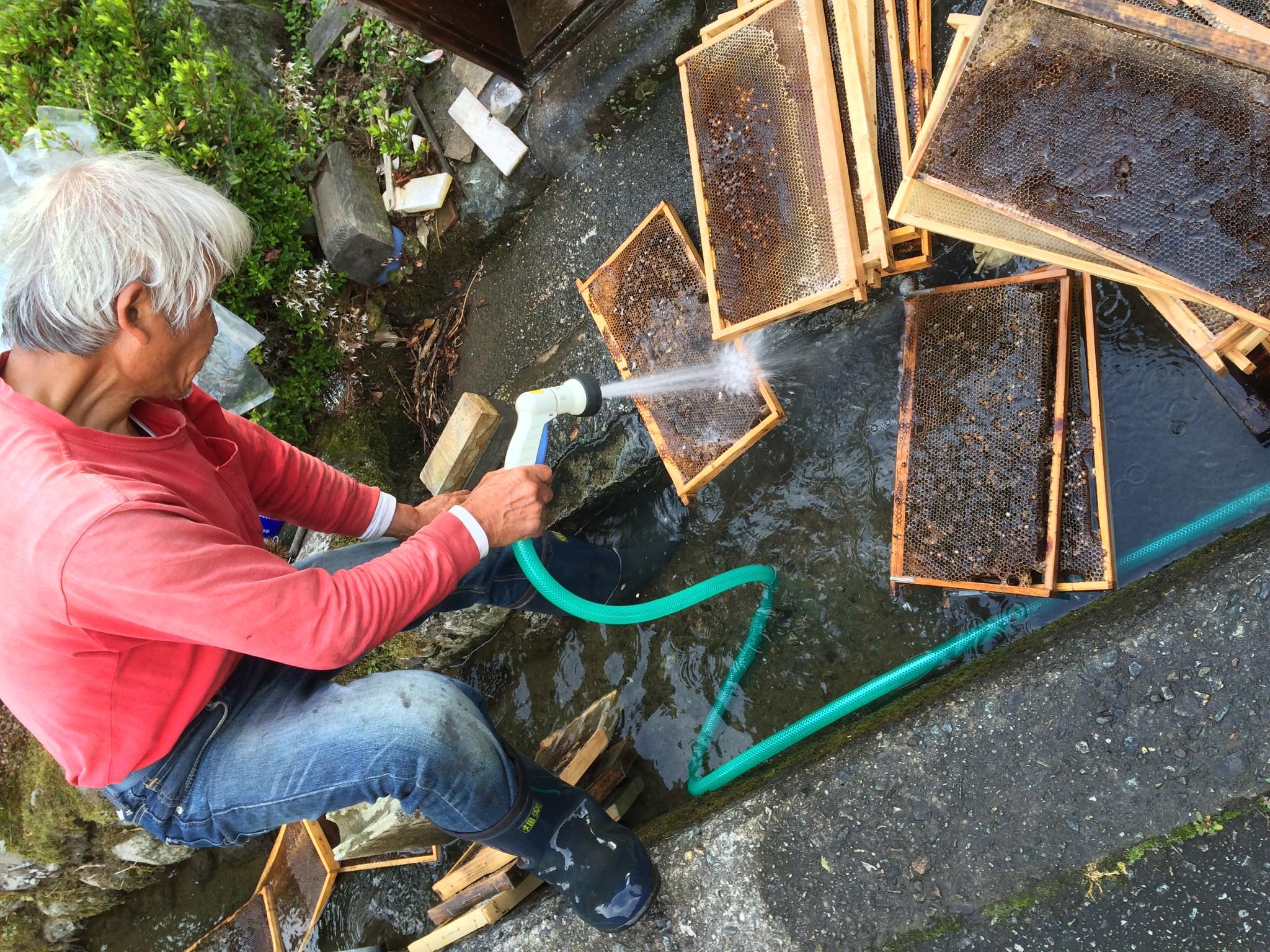 巣板の掃除