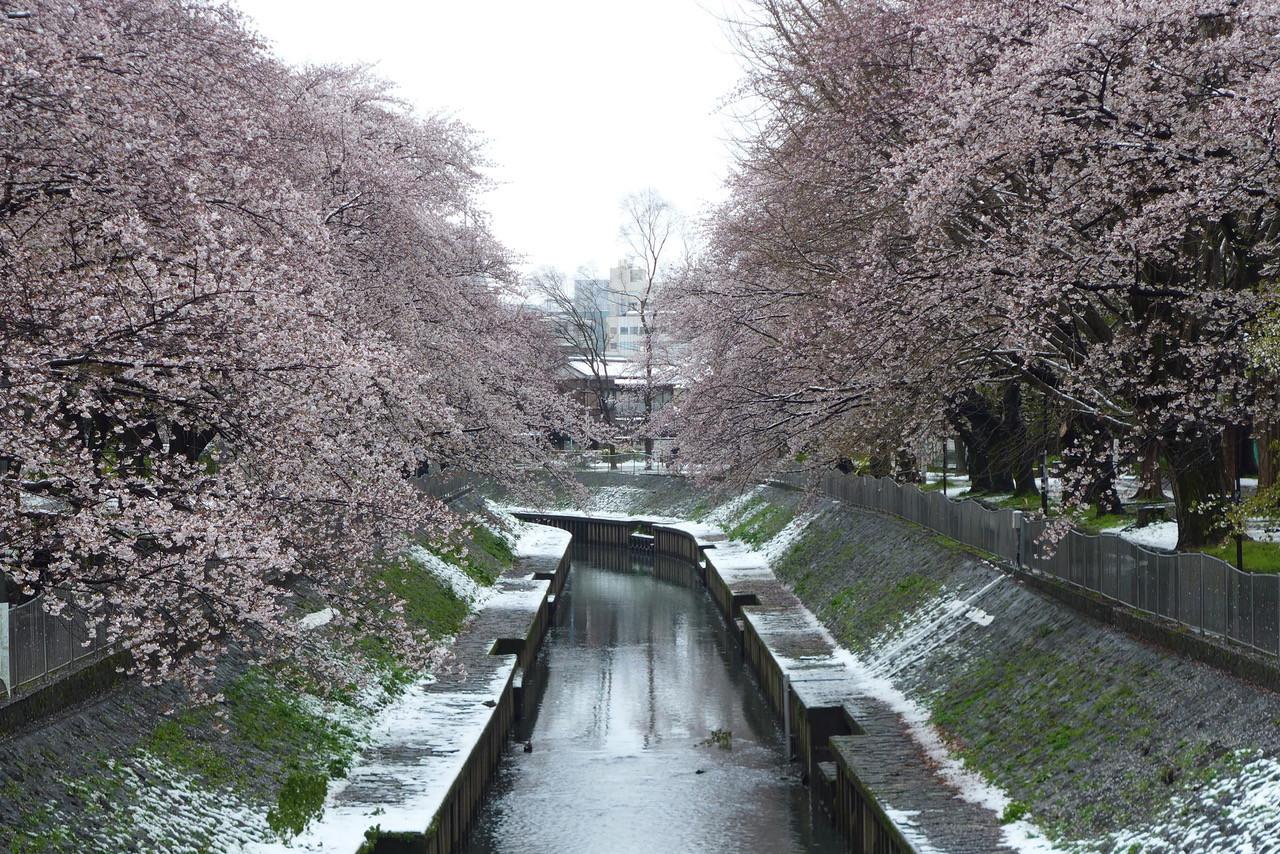 きのうの雪景色