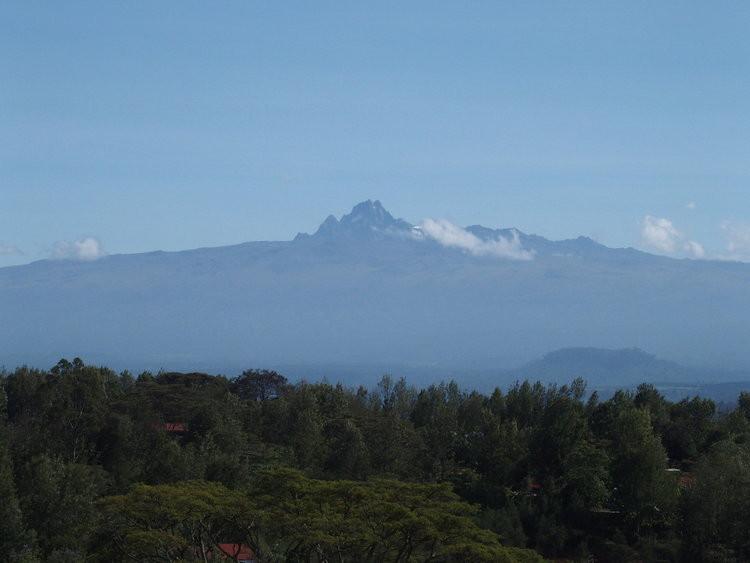 <今月の限定コーヒー>コーヒー生育にとって理想的な地域で作られるケニアのコーヒー