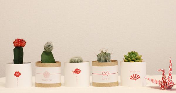 植物を使ったプチギフトに和風デザインのカードが新発売!
