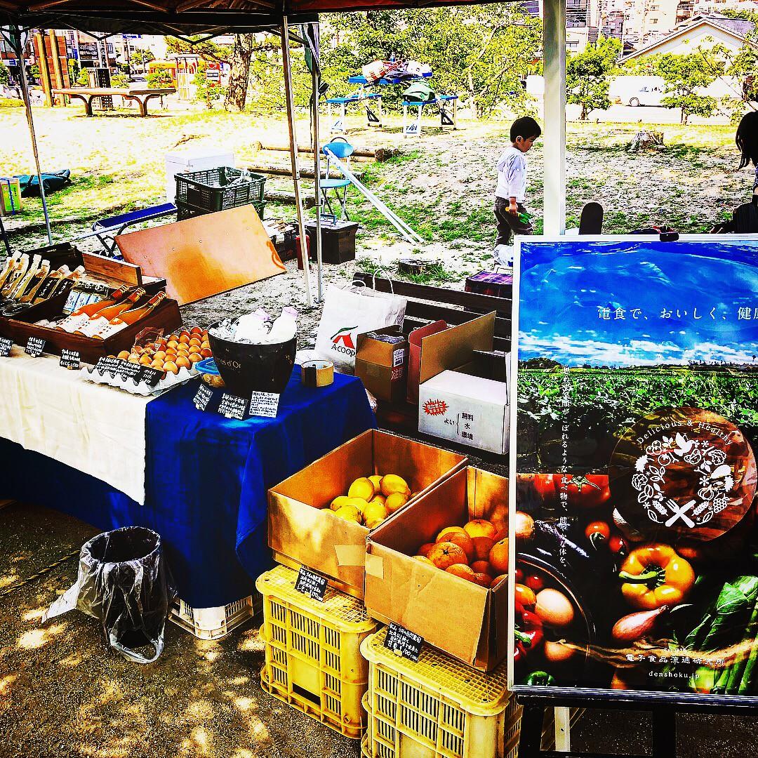 来週日曜日はえひめオーガニックマーケットの開催日!