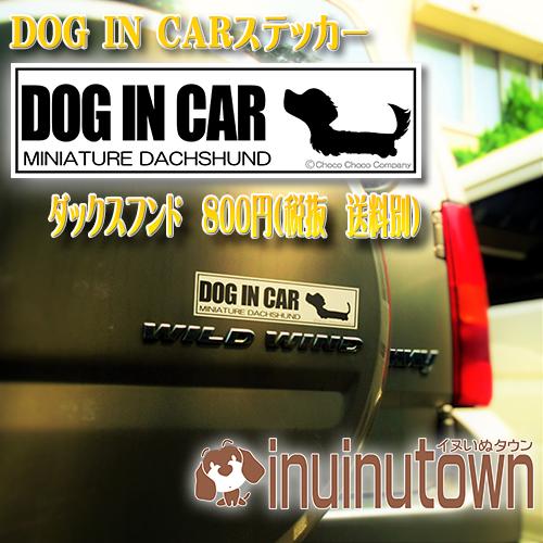 DOG IN CARステッカーとダックスフンド