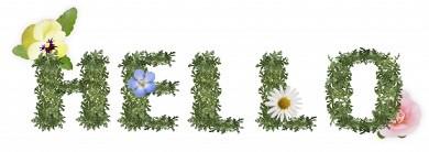ハーバリウムにオススメなお花☆