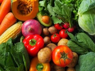 野菜が生き生きと!