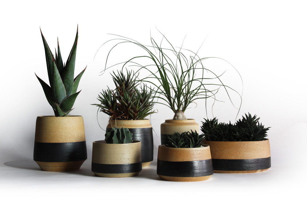 "Botanico Original Planter ""NORIMAKI"" debut!!"
