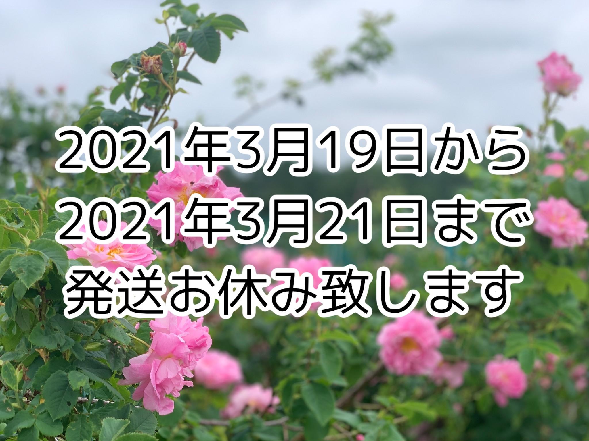 【休業のお知らせ】3/19〜3/21まで、休暇に伴い全ての発送がおやすみとなります