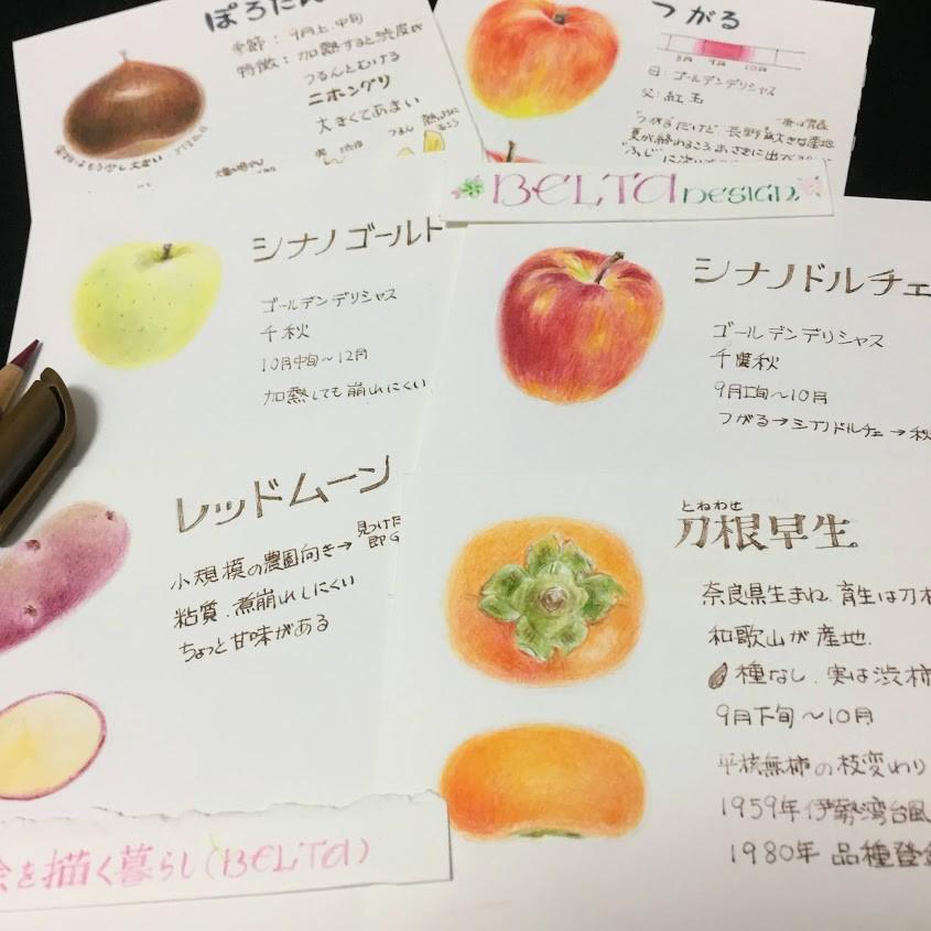 【絵を描く暮らし】リンゴ図鑑