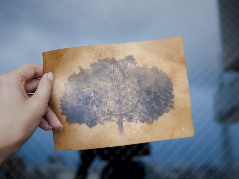 【日常】生命の樹