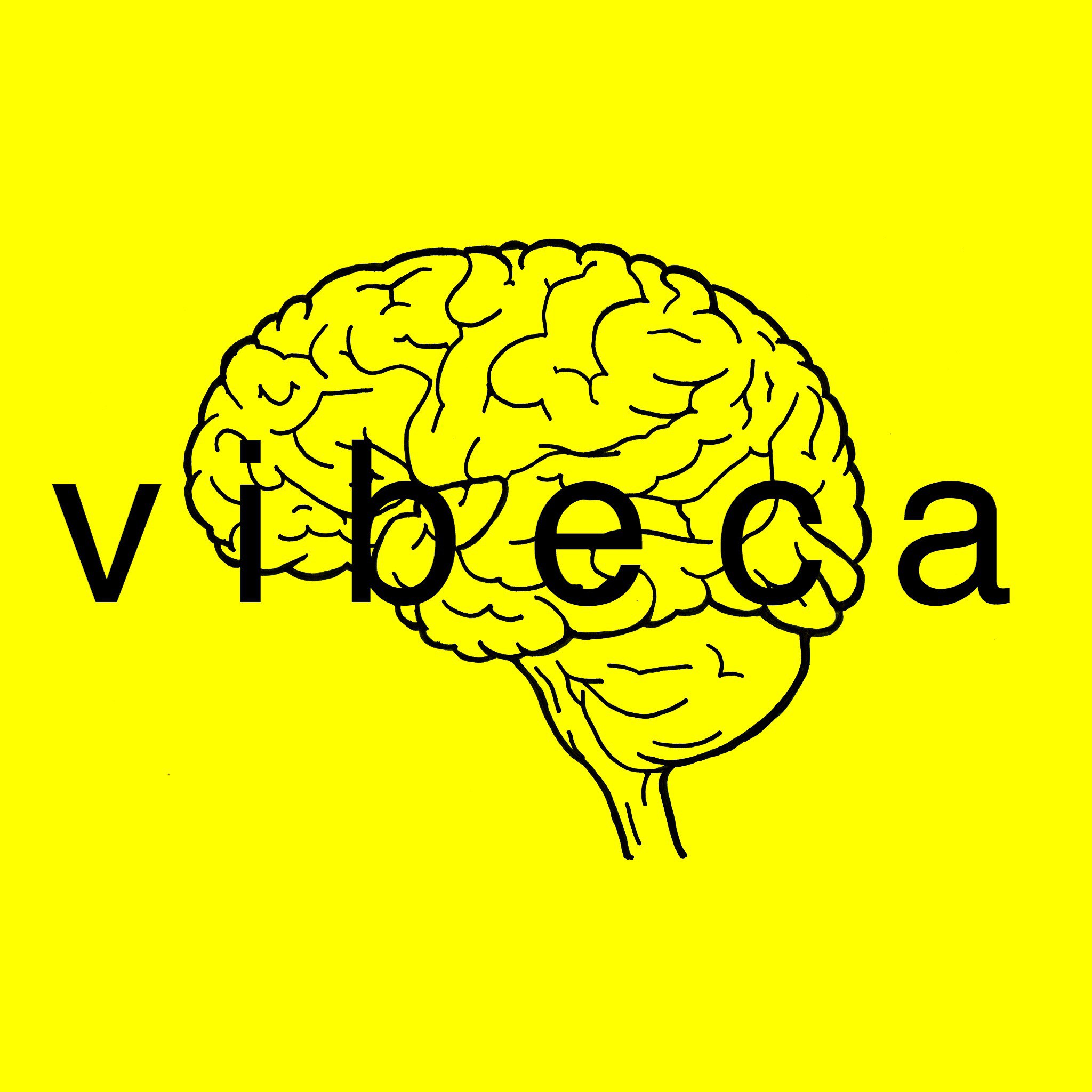 vibeca より皆様へのご挨拶、購入前に必ずお読みください。