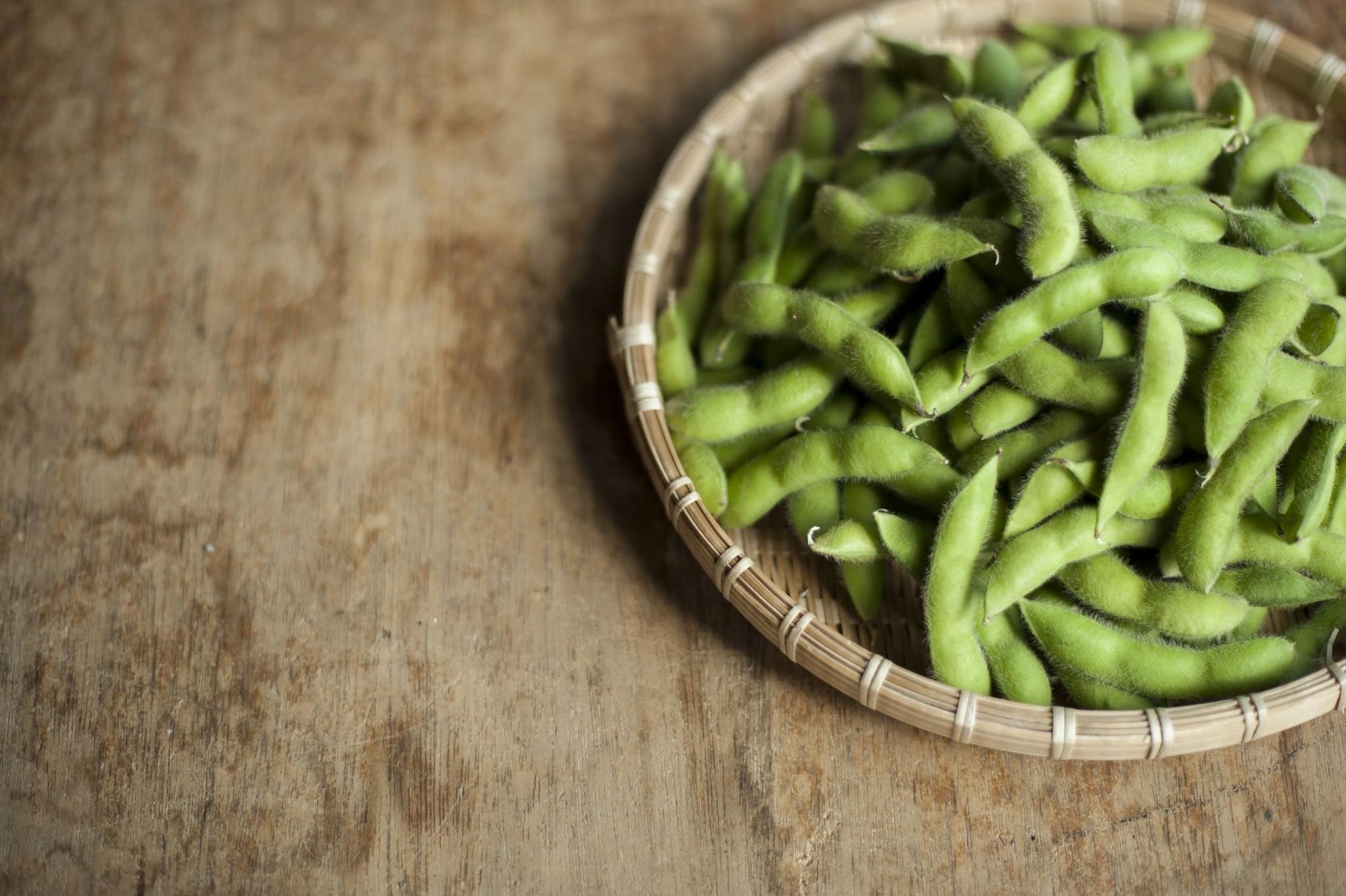 あけぼの大豆  極選 枝豆 予約開始