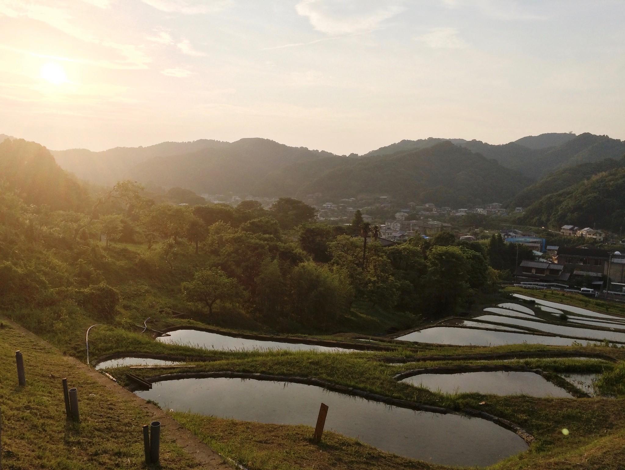 棚田アイスで繋がる、日本各地の棚田のご紹介。