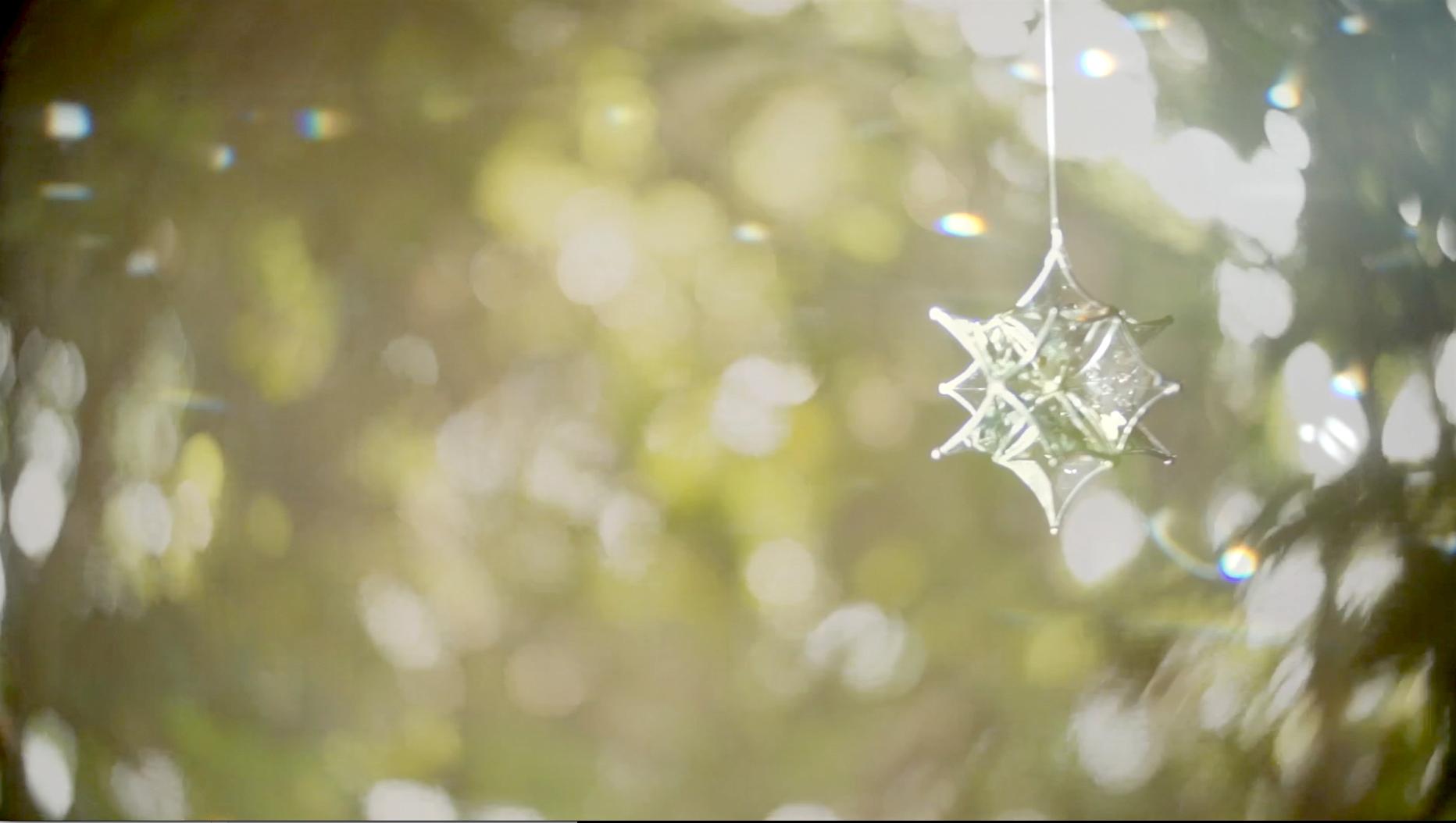 自然が創り出す光りとサンキャッチャー (MOVIE)