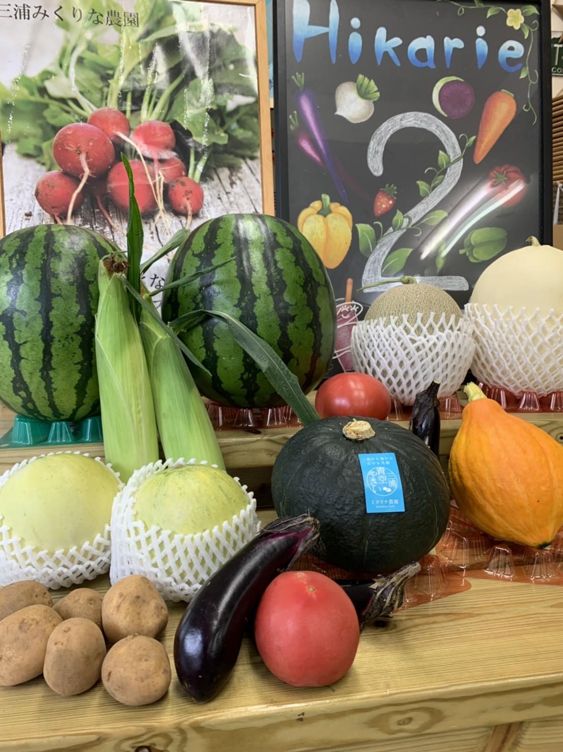 夏野菜が最盛期です!