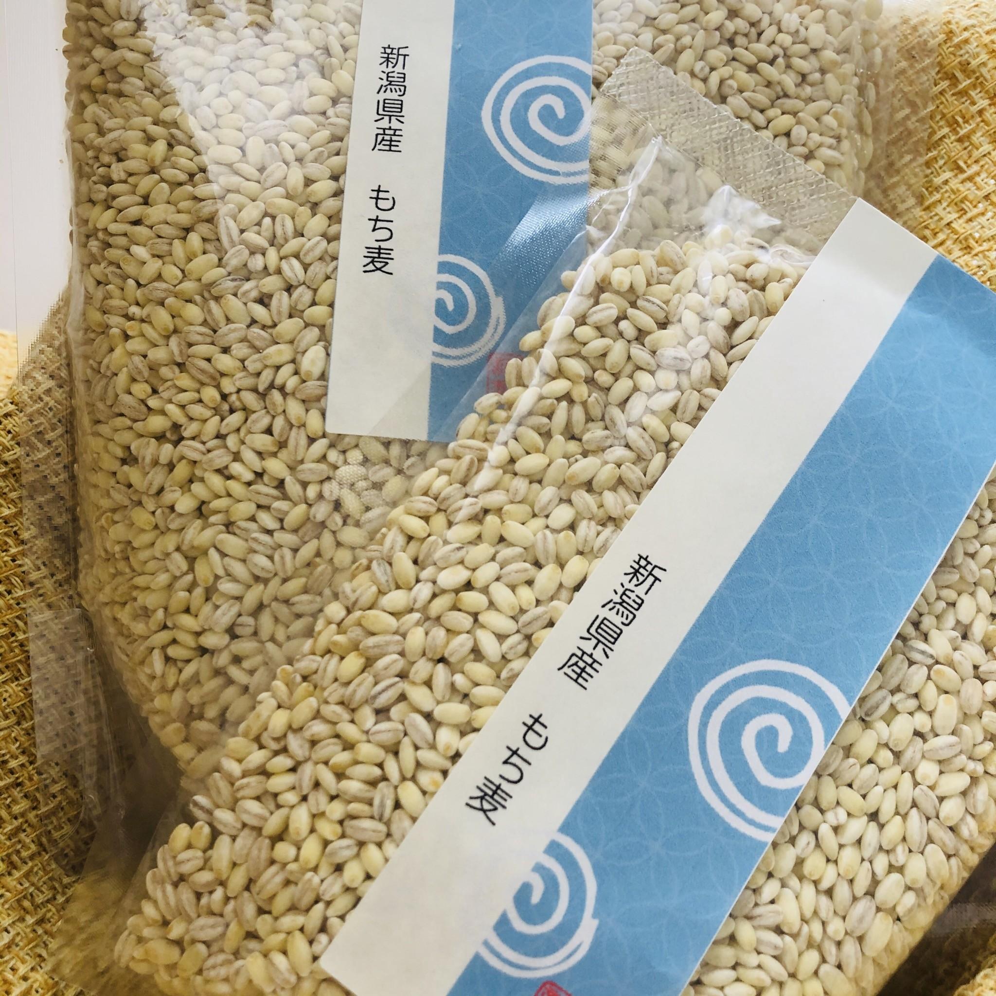 【販売開始】もち麦の販売を始めます♬